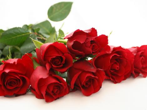 Las rosas rojas, como no…un imprescindible de Valentinés Day