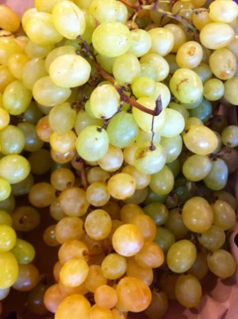 Una fruta típica de temporada, aporta el ocre y el color mostaza.