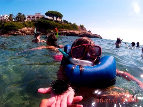 Con las gafas puestas, snorkel y como cuidar un erizo de mar.